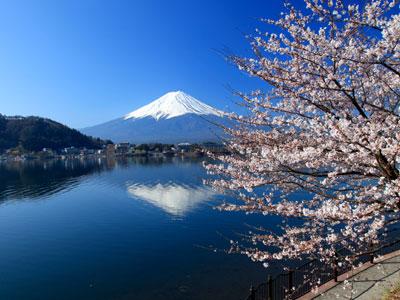 Tokyo - Mt Fuji