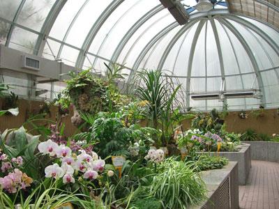 Botanical Garden Hong Kong by jinjian liang via http://www.flickr.com/photos/liangjinjian/2132076910/
