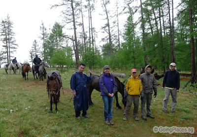 Horse Riding In Forest