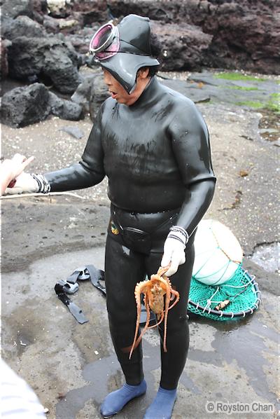 Jeju Haenyo With Octopus