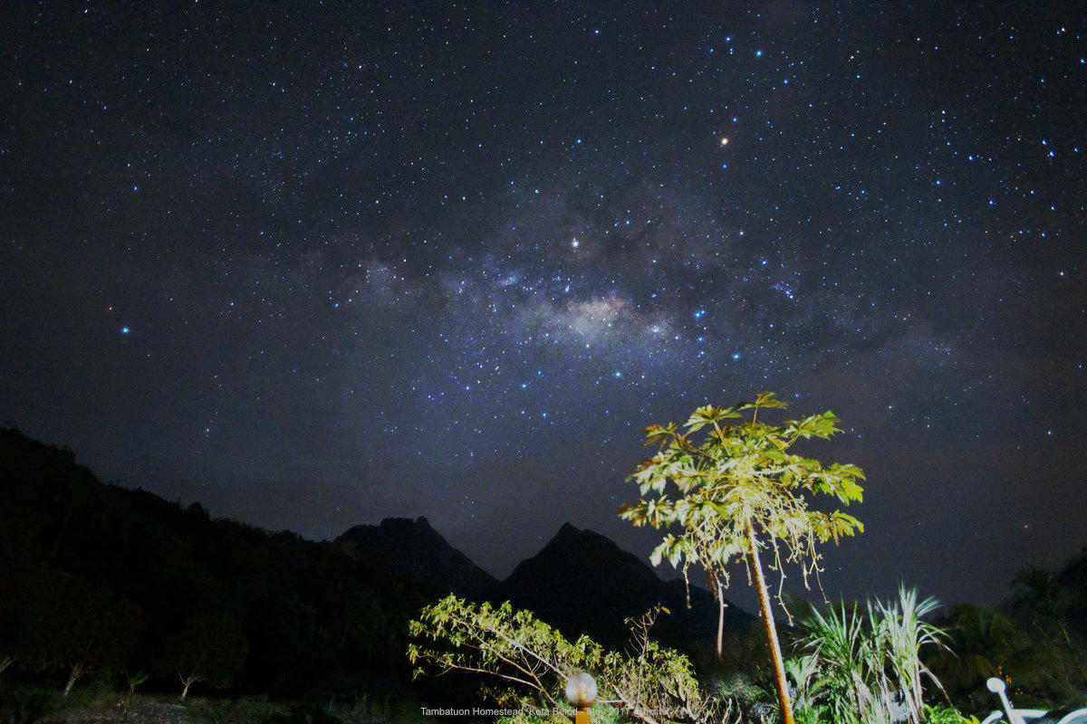 Milky Way at Tambatuon Homestead